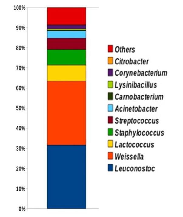 2-Cabrera2012 generes bacteris